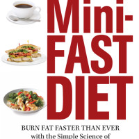 MiniFast_Cover